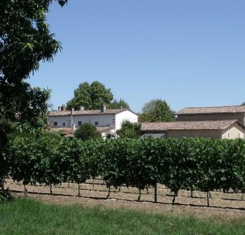 [:fr]Château De Lionne[:] 7
