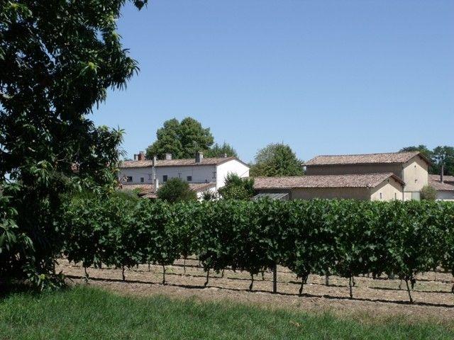 (Français) Château De Lionne 1