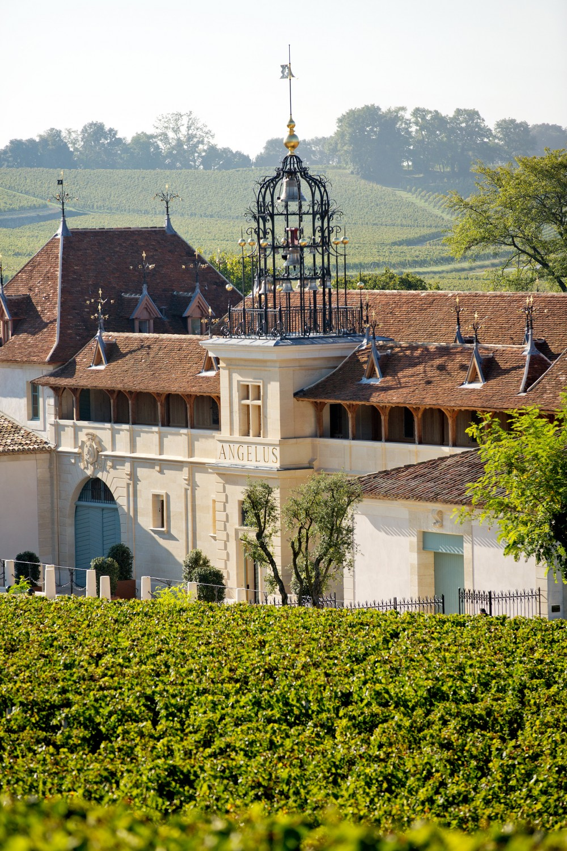 (Français) Château Angélus 1